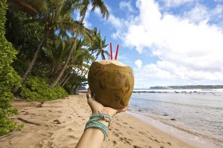 Kauai, Island of Vitamin Sea