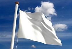 White Flag1
