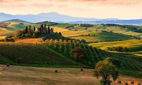 What's So Great About Tuscany Anyway?