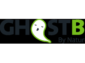 Amazing Night's Sleep with GhostBed Plus Free Delivery!