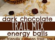 Dark Chocolate Trail Energy Balls {soy Free, Gluten Vegan Friendly}