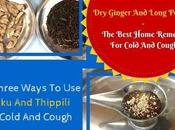 Ways Ginger Thippili Cold Cough Toddlers