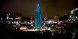 Christmas Tree, Trafalgar Square, London
