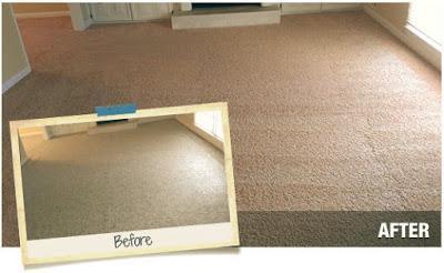 4 Popular Methods to Repair Carpet