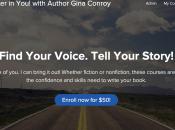 Write Novel 2016
