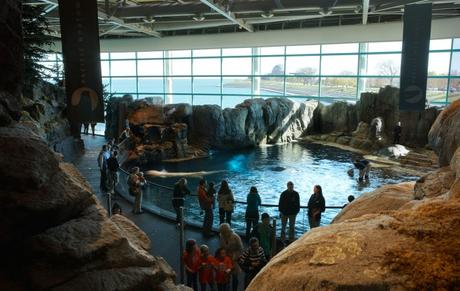 Museum free days this winter the complete list paperblog Aquarium free days