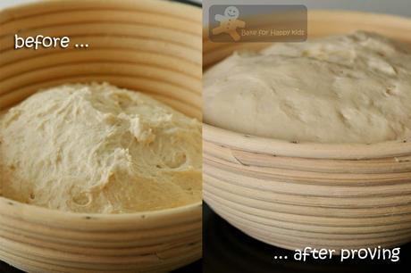 Sourdough Starter and My First Successful Sourdough Artisan Bread