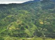 Favorite Cycling Routes: South Yungas (Bolivia)