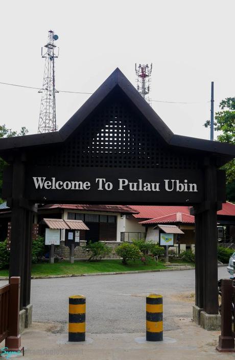 PULAU UBIN | Singapore's Off the Beaten Path