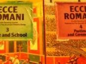 Romans Landing: Ecce Romani