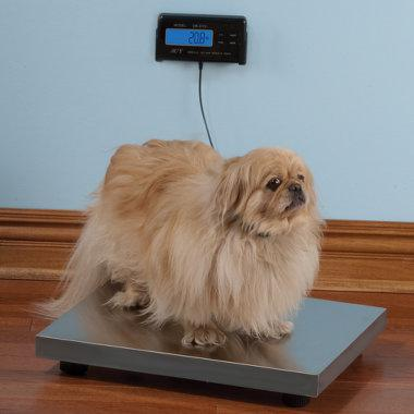The Electronic Pet Scale