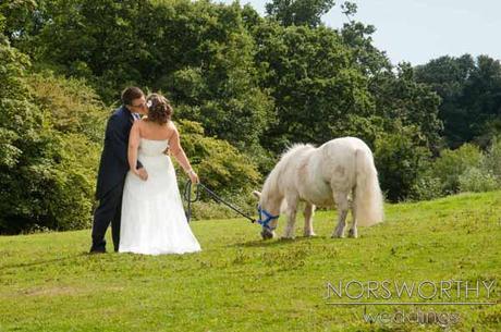 wedding photography by Martyn Norsworthy (11)