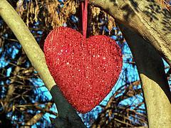 Valentine Heart in a Tree 1