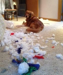 The Stuffing Toys Are Made Of