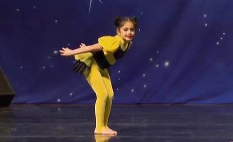 vivi-stein-bee-dance