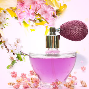 Cashmere Type Fragrance