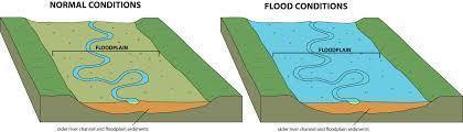 Homes and companies should be built on flood plains despite risks, says panel