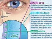 Symptoms Causes Eyes