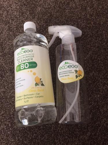 Eco Egg multiple purpose cleaner