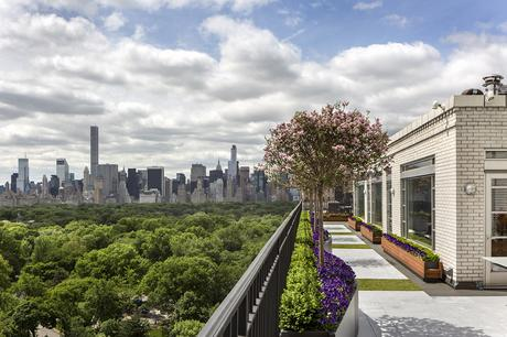 Penthouse garden with view of Central Park