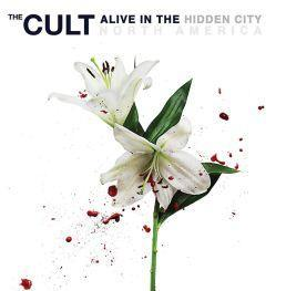 The Cult Alive in the Hidden City