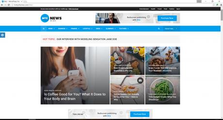 seo optimised wordpress news theme