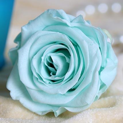 Gift Forever Roses This Valentine - Paperblog