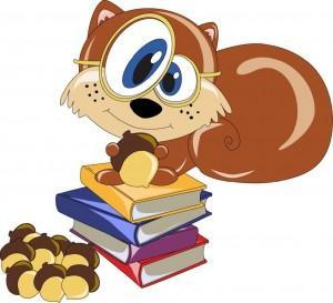 squirrly seo plugin for wordpress