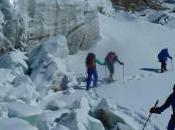 Winter Climbs 2016: Soap Opera Continues Nanga Parbat International Team Breaks Down Again