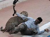 """""""கற்கை நன்றே; Leopard Comes Visiting School"""