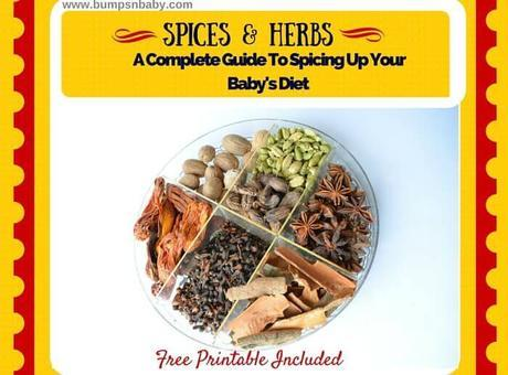 34 Essential Spices for Babies (Age Wise FREE Printable)