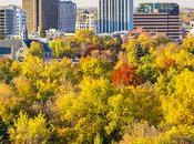 Five Free Activities Boise