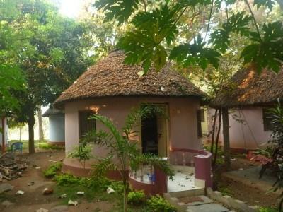 My pink hut