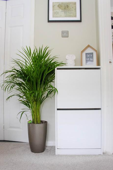 Our Home: Adding a touch of nature with Homebase #LifeImprovement