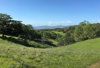 California Dreamin' - Adventures in Santa Rosa