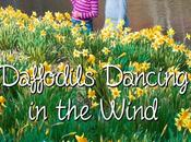 Daffodils Dancing Wind Biomimicry Young Children