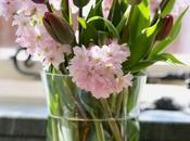 Vase Monday Blossom Time
