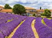 Join Fiction Writing Workshop Provence