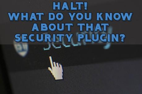 HALT! What Do You Know About that Security Plugin?