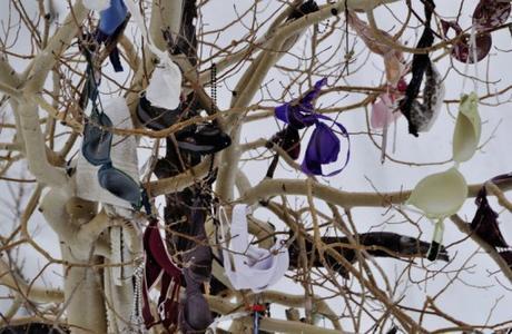 Bras in Trees
