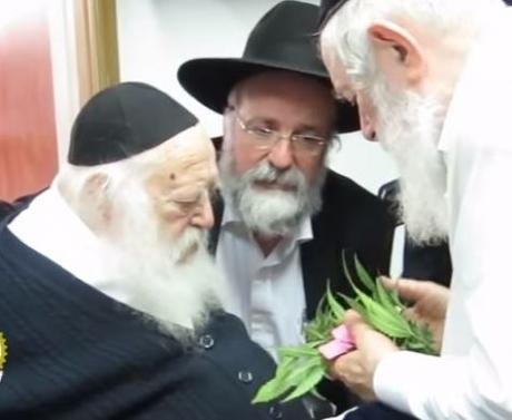 Picture of the Day and interesting psak about marijuana and Pesach