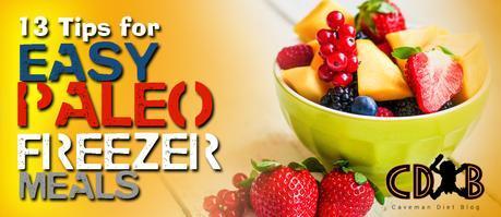 easy paleo freezer meals banner