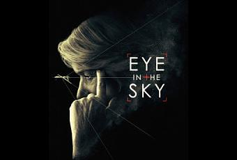 Essay on That Eye, the Sky Essay