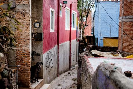 The small pedestrian and donkey only streets are called Callejons - this is right outside our home in Guanajuato.