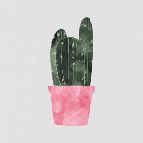 Cactus In Pink Pot Still Life Painting Affordable Artwork