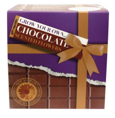 Grow Your Own Chocolate Flowers