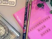 Beauty Blogging Tips Beginners