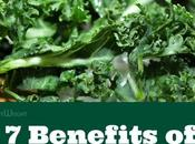 Kale: Science Backed Benefits