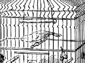 Droppings from Catholic Birdcage: Requiescat Pace, Giving Platforms Honors People Hold Views Contrary Church Teaching