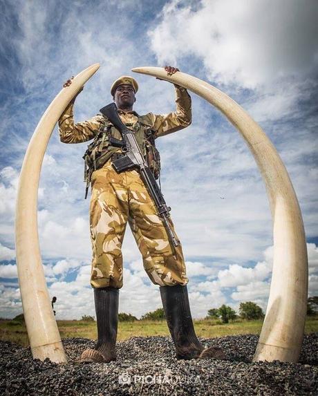 kenyas ecotourism essay